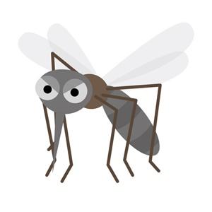 ハーブ,虫除け,スプレー,蚊,画像