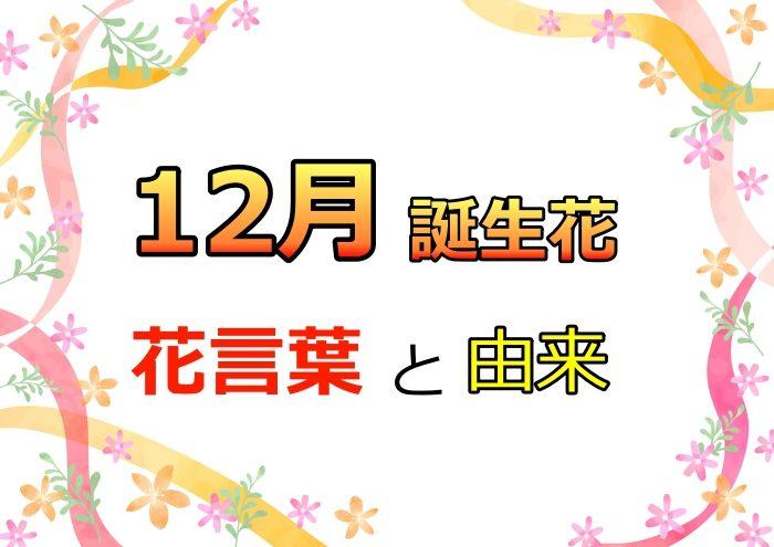 12月誕生花,花言葉,由来,カレンダー