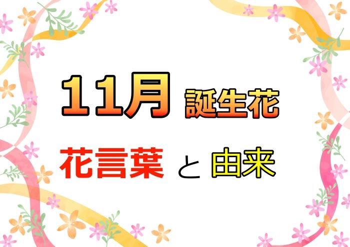 11月誕生花,花言葉,由来,カレンダー