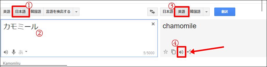 カモミールを英語で発音すると?スペルが2種類あるけどどっちが本当なの?