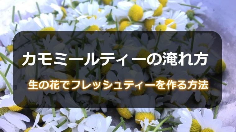 カモミールティーの入れ方!生の花でフレッシュティーを作る方法